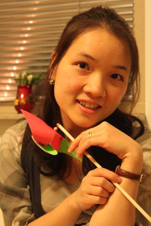 Thanh Thi Huyen Dinh, Lage Landen Group